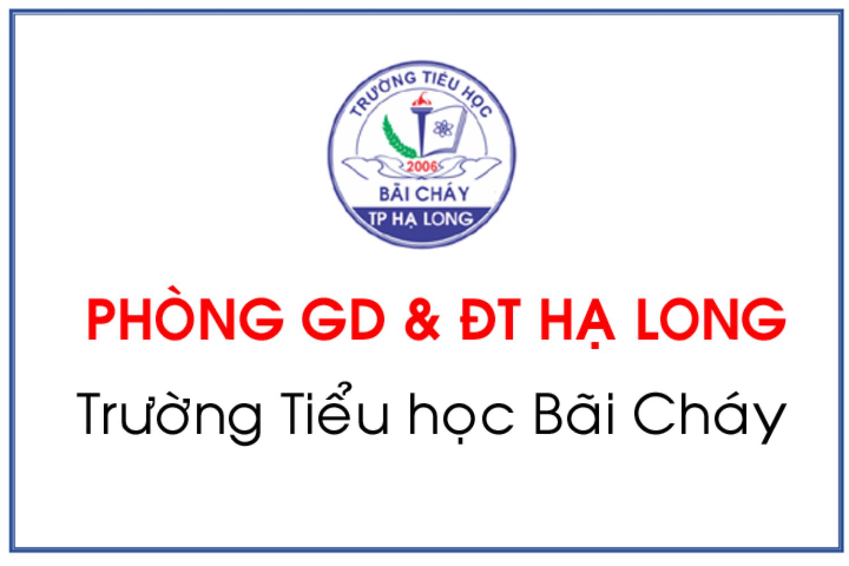 website trường học Tiểu học Bãi Cháy